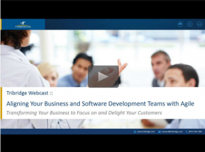Aligning your Business and Software Development Teams with Agile